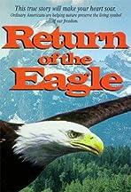 Return of the Eagle