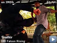 falcon rising full movie tamilyogi
