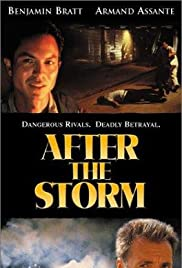After the Storm(2001) Poster - Movie Forum, Cast, Reviews