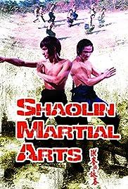 Shaolin Martial Arts Poster