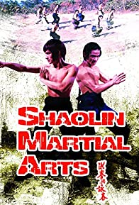 Primary photo for Shaolin Martial Arts