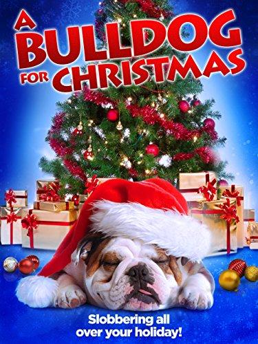 A Bulldog for Christmas (2013) - IMDb