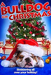 Primary photo for A Bulldog for Christmas