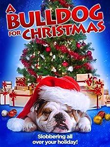 A funny movie to watch A Bulldog for Christmas USA [2k]