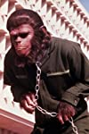 7 Crazy 'Planet of the Apes' Moments You Won't Believe
