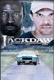 Jackdaw Poster