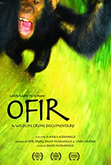 Ofir (2013)