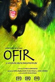 Ofir Poster