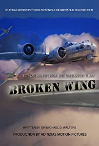 the Broken Wing full movie download in hindi