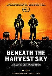 Primary photo for Beneath the Harvest Sky
