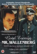 Good Evening, Mr. Wallenberg