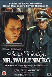 Download God afton, Herr Wallenberg (1990) Movie