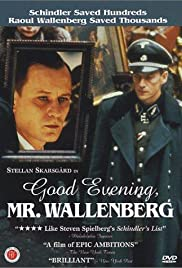 Good Evening, Mr. Wallenberg Poster