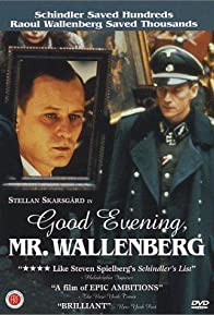 Primary photo for Good Evening, Mr. Wallenberg