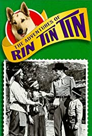 Dvd movies ipod downloads Rin Tin Tin and the Raw Recruit by [flv]