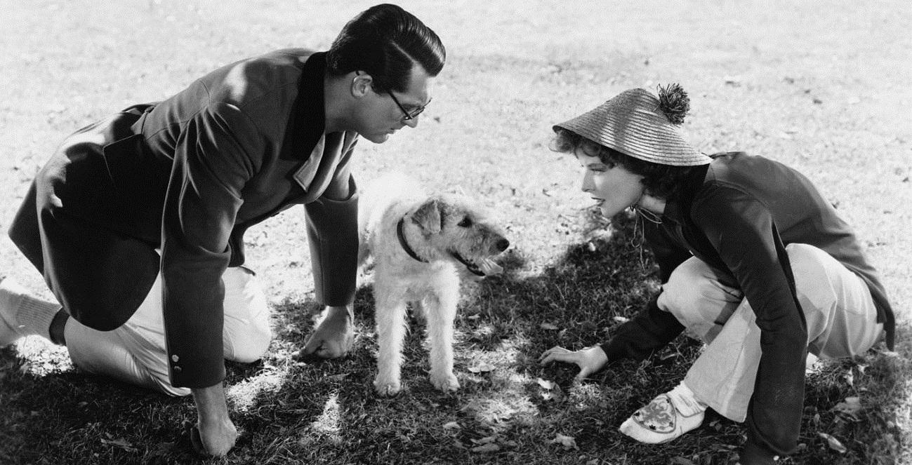 Cary Grant, Katharine Hepburn, and Asta in Bringing Up Baby (1938)
