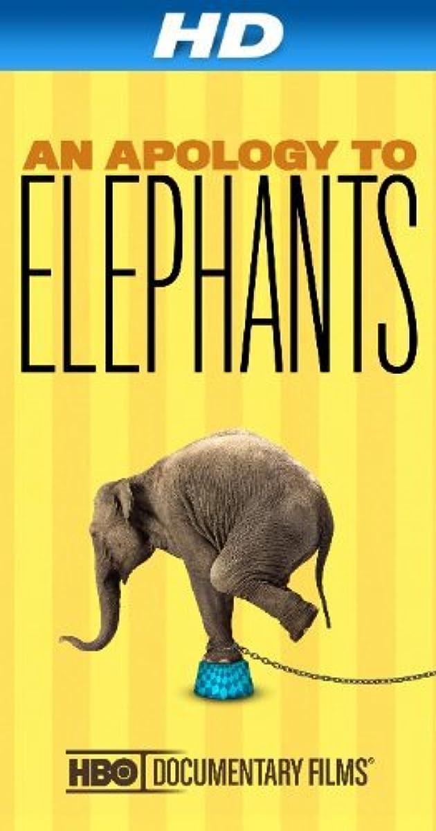An Apology To Elephants 2013 Imdb