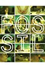 Fossil (2014) Poster