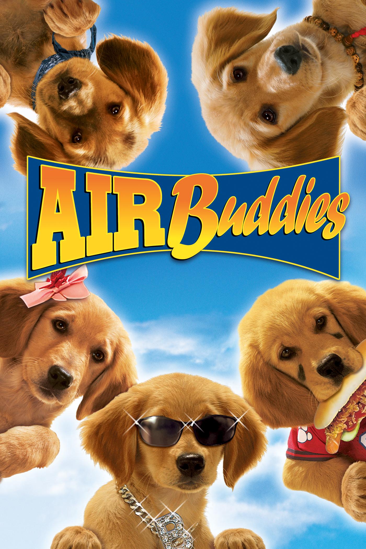Air Buddy