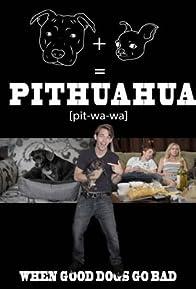 Primary photo for Pithuahua