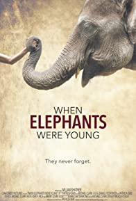 Primary photo for When Elephants Were Young