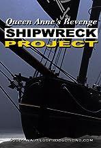 Queen Anne's Revenge Shipwreck Project