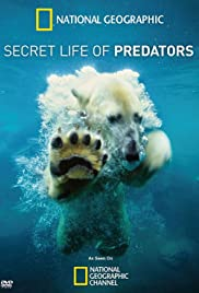 Secret Life of Predators Poster