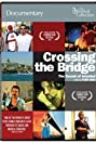 Crossing the Bridge: The Sound of Istanbul (2005) Poster