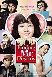 Finding Mr. Destiny Poster