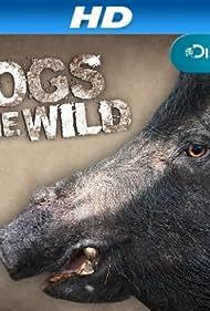 Hogs Gone Wild (2011)
