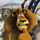 Jada Pinkett Smith, Chris Rock, David Schwimmer, and Ben Stiller in Madagascar: Escape 2 Africa (2008)