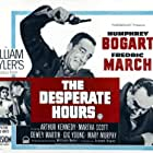 Humphrey Bogart, Fredric March, Robert Middleton, and Mary Murphy in The Desperate Hours (1955)