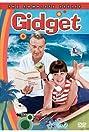 Gidget (1965) Poster