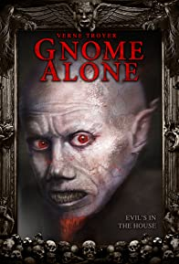 Primary photo for Gnome Alone