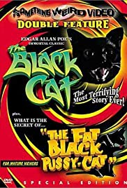 The Black Cat (1966) 1080p