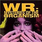 Jagoda Kaloper in W.R. - Misterije organizma (1971)