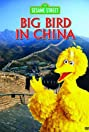 Big Bird in China (1983) Poster
