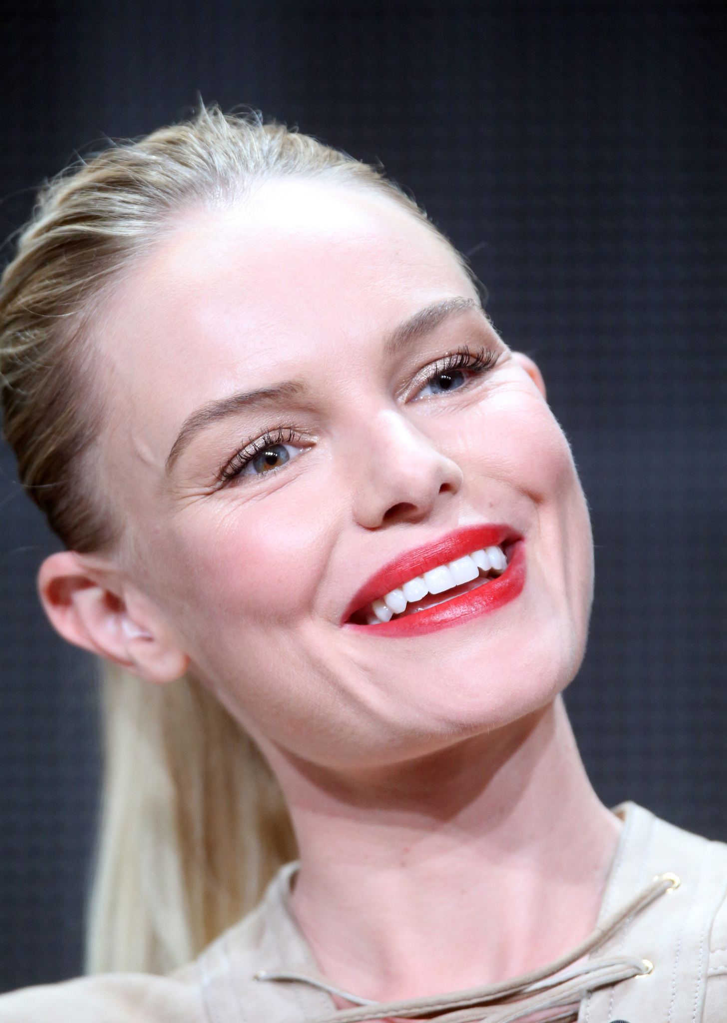 Kate Bosworth at an event for The Art of More (2015)