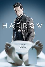 Ioan Gruffudd in Harrow (2018)