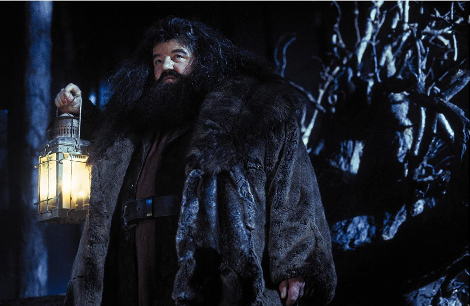 Robbie Coltrane in Harry Potter and the Sorcerer's Stone (2001)