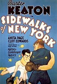 Sidewalks of New York Poster
