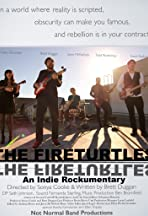 The Fireturtles: An Indie Rockumentary