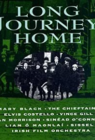 Primary photo for The Irish in America: Long Journey Home
