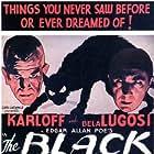 Boris Karloff, Bela Lugosi, Julie Bishop, and David Manners in The Black Cat (1934)
