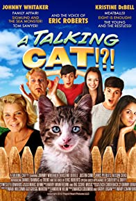 Primary photo for A Talking Cat!?!