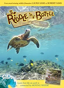 MP4 movie downloads for pc The Riddle in a Bottle by none [1280p]