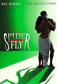 Primary photo for The Spider and the Fly
