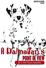 A Dalmatians Point of View none