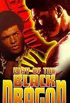 Way of the Black Dragon