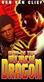 Way of the Black Dragon (1979) Poster